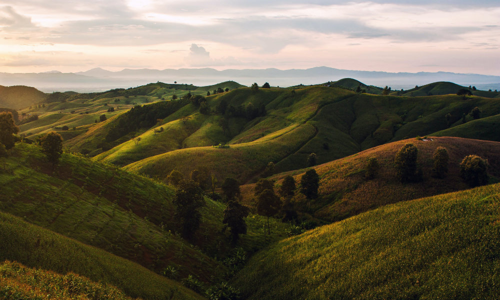 Rolling Grassy Hills on Overcast Day